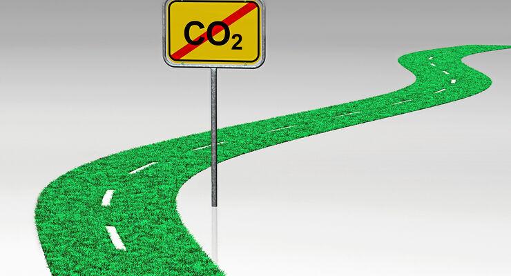 Klimaschutz, Grüne, Rasen, Co2